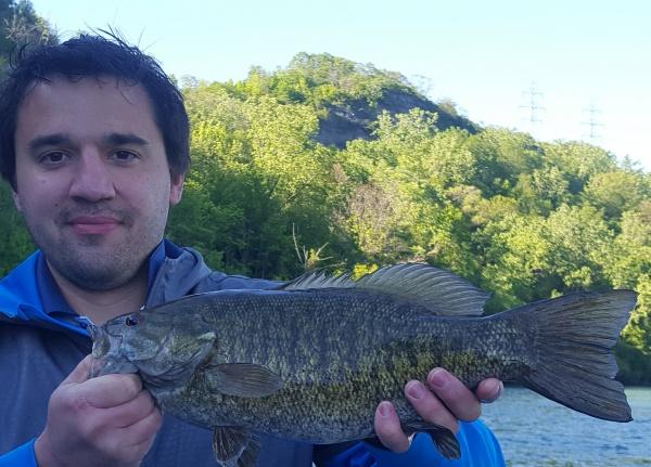 Lake erie niagara river salmon fishing charters 1st for Niagara river fishing report