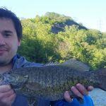 Bass Fishing Niagara River